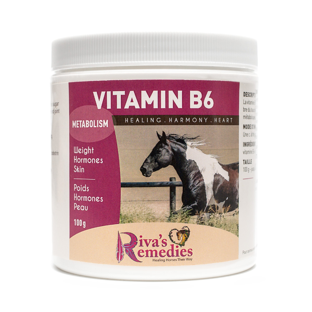 Insulin Resistance in Horses - Signs, Symptoms and Solutions
